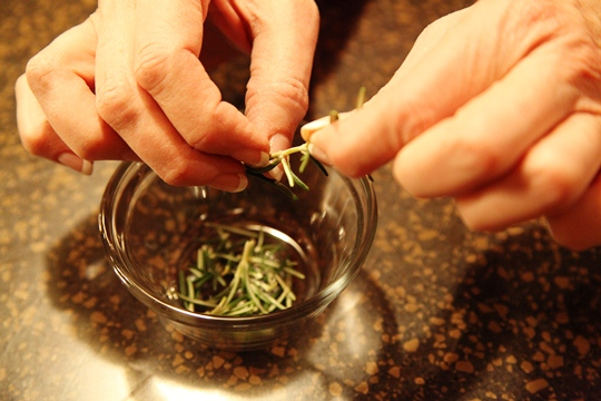 Pulling leaves off of Fresh Rosemary Stem