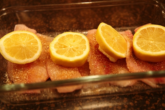 Top Tilapia with Lemon Slices