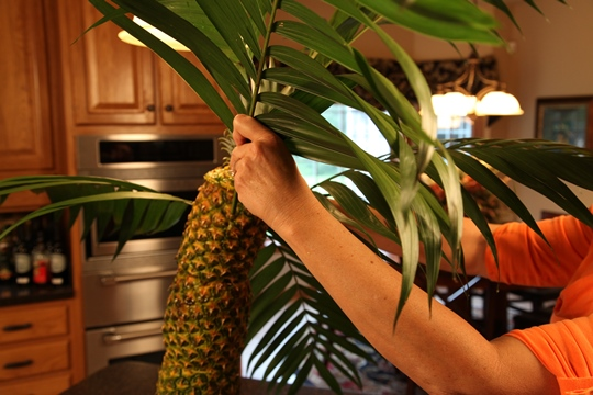 Adding Palm Leaves to Pineapple Palm Tree