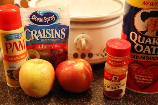 Crock Pot Overnight Oatmeal Ingredients